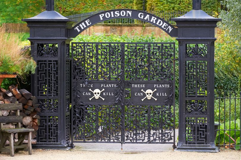 Beautiful English garden guarded by iron gates where every plant could kill you